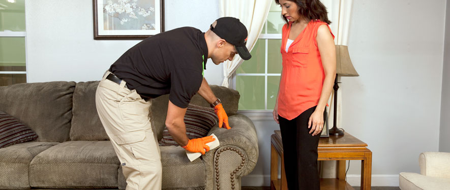 Jackson Township, OH carpet upholstery cleaning